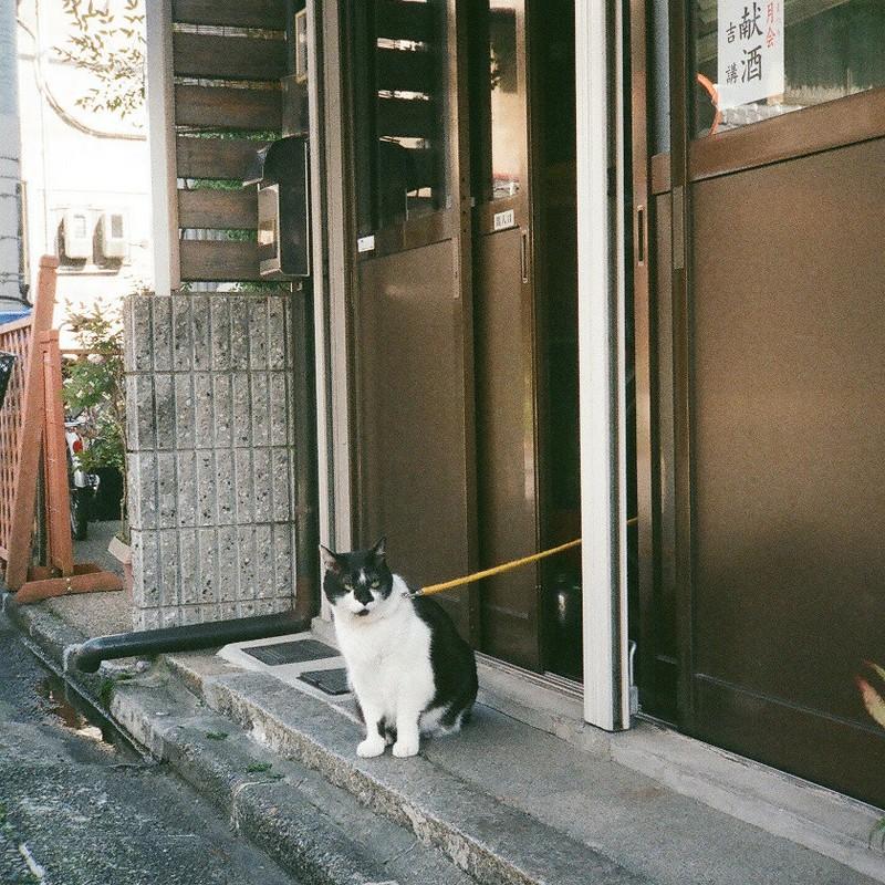 続続続続・ある京都