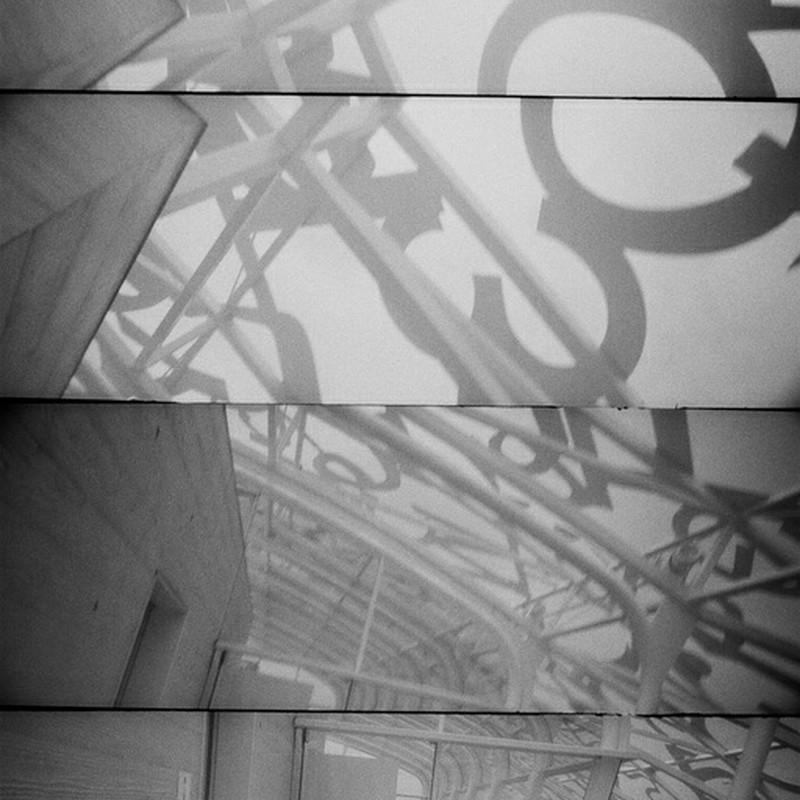 瀬戸の中心でカメラを振りまわしたけもの