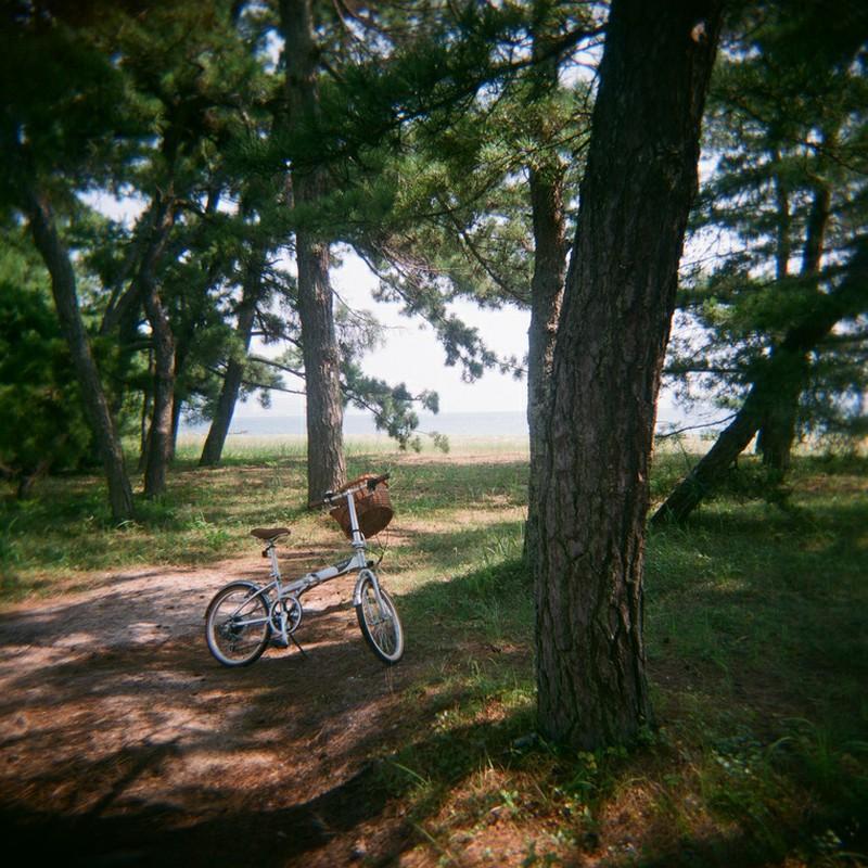 Re: 自転車散歩