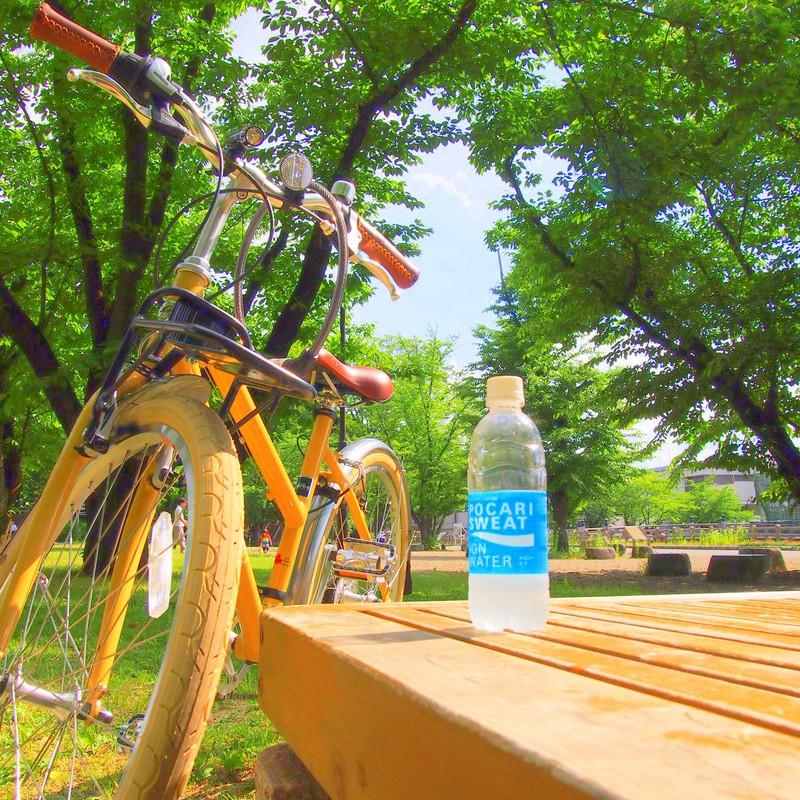 しあわせの黄色い自転車