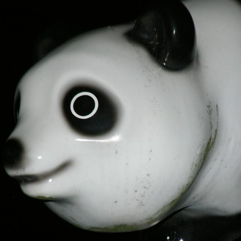 閲覧注意 恐怖のパンダ