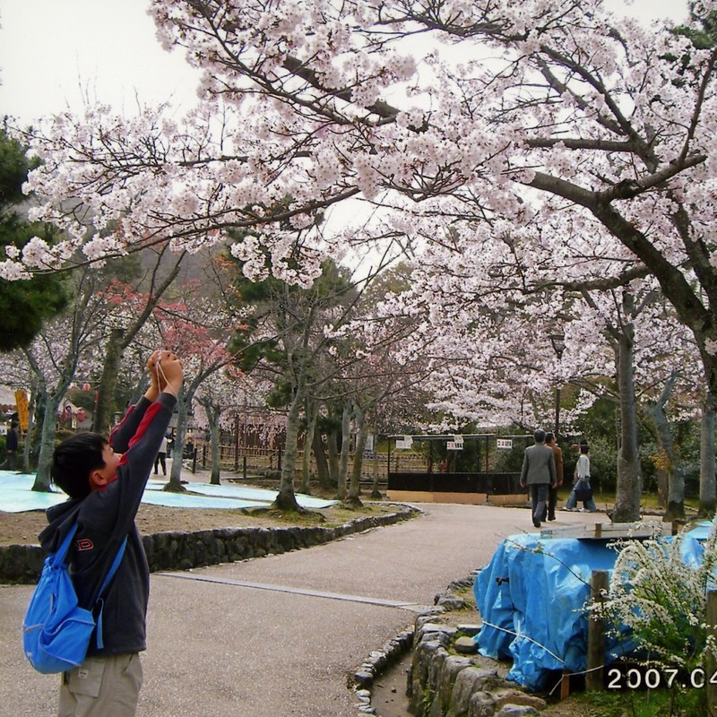 今週末は京都へGO!!