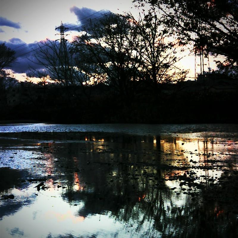 冬 川辺の風景