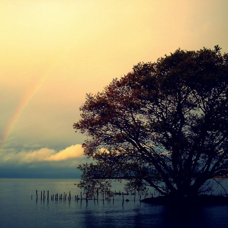 雨の止み間に 虹を待ち