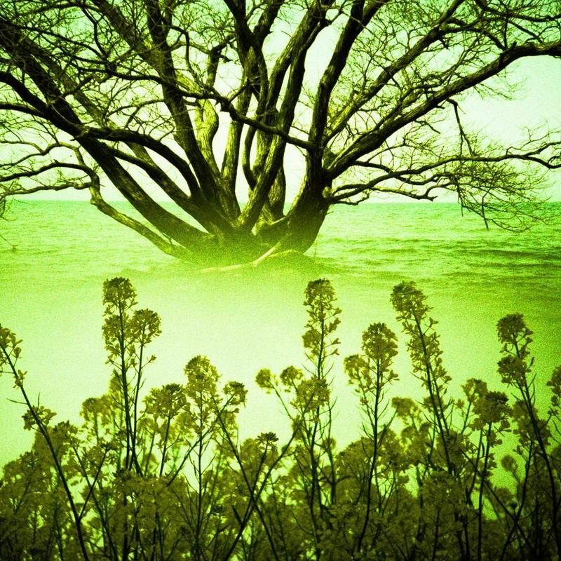 水と緑の星