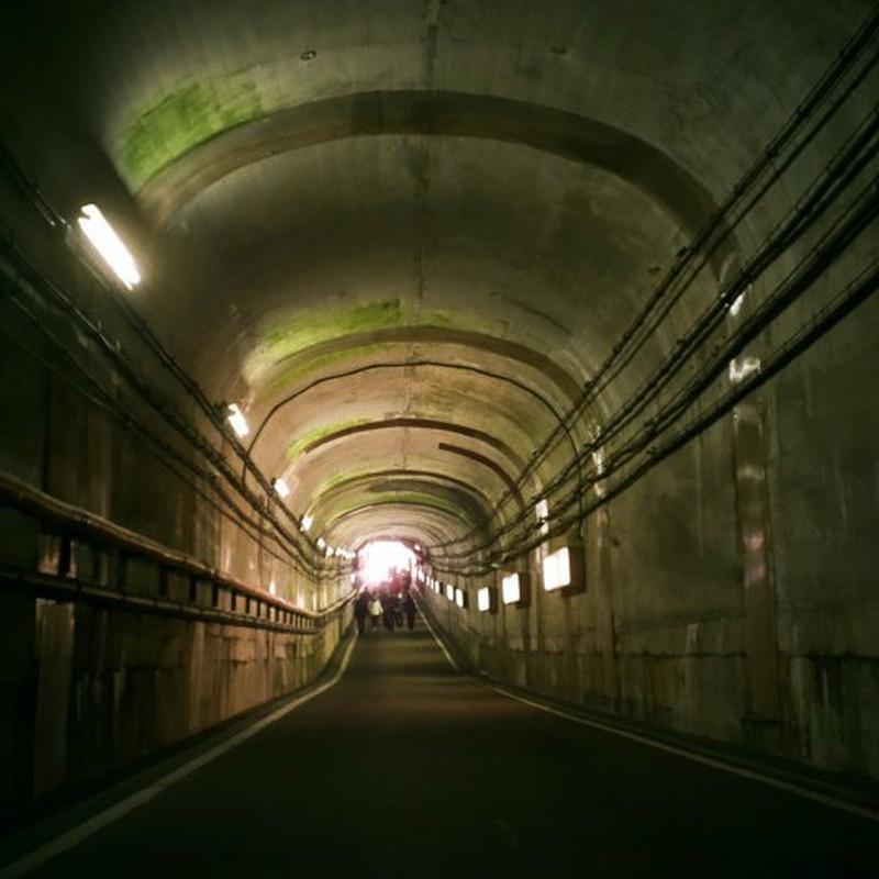 県境の長いトンネルを抜けるとそこは
