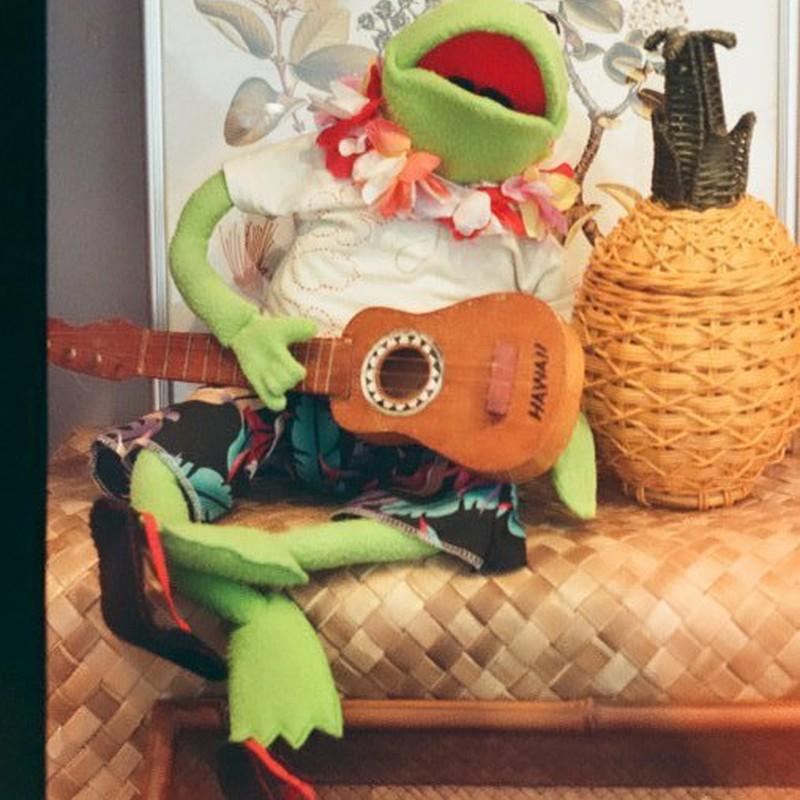 ハワイなカエルさん