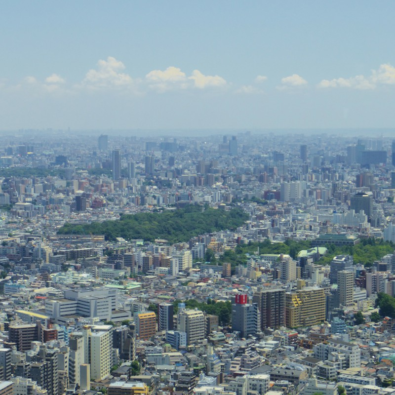 大都会の緑。