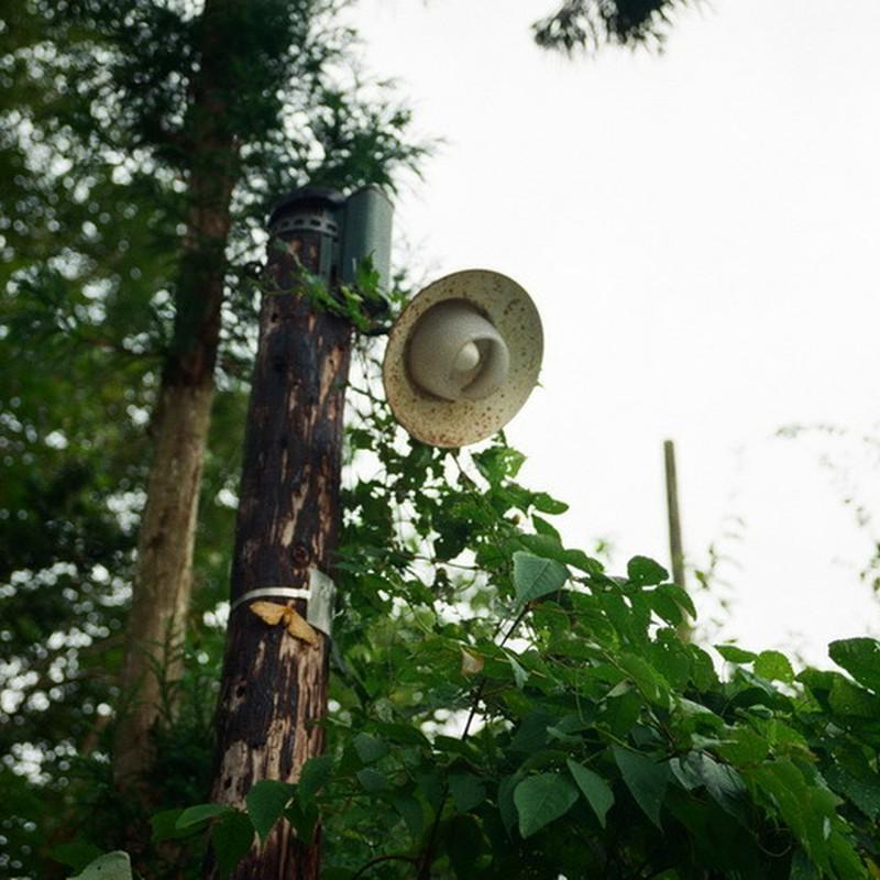 木の電柱。