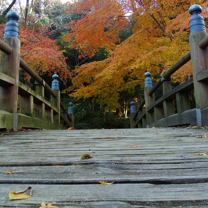 橋の向こうは赤黄色
