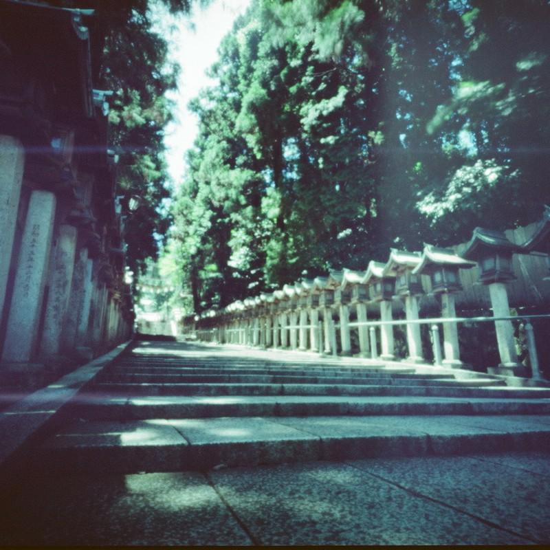Re:真夏の参道。