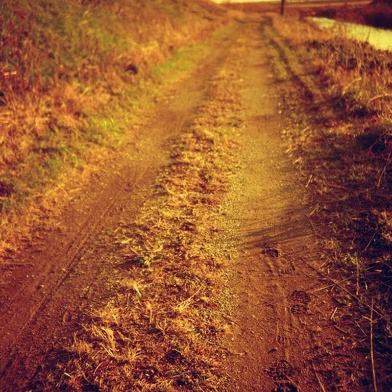 僕らの道。