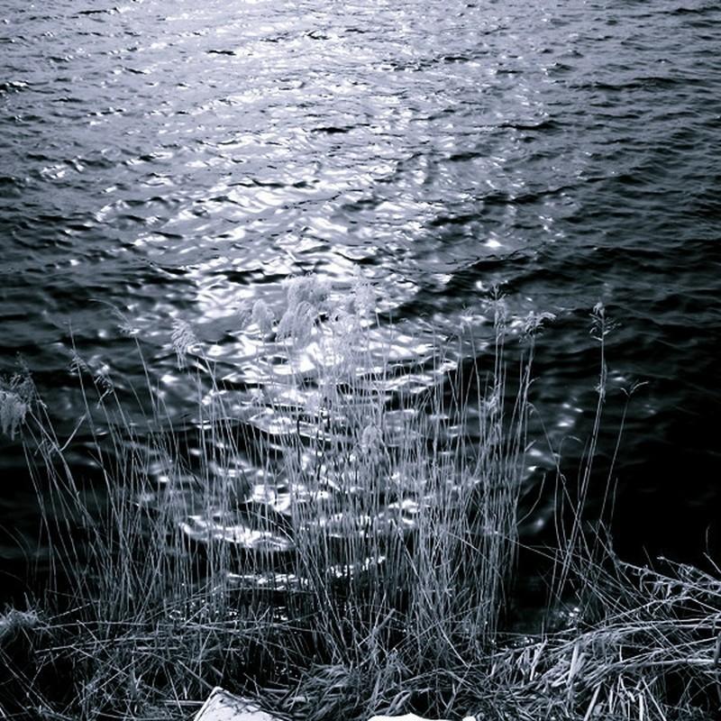 冬の湖面。