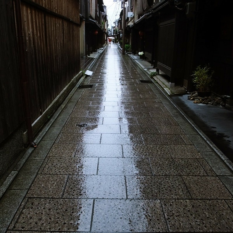 雨の日を楽しみましょう。