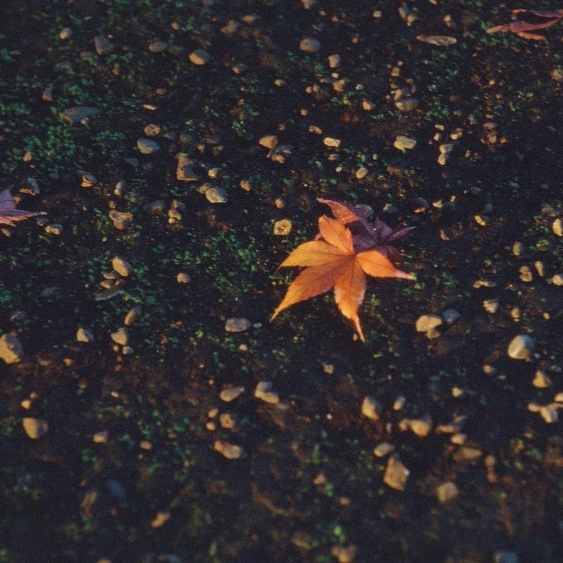 終わりの季節