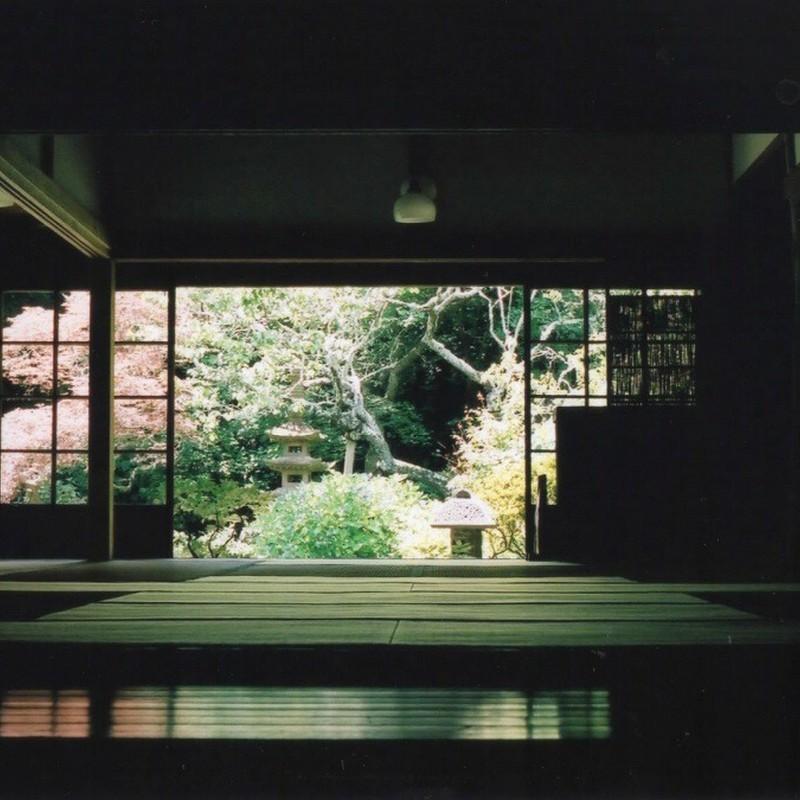 そうだ 京都 …