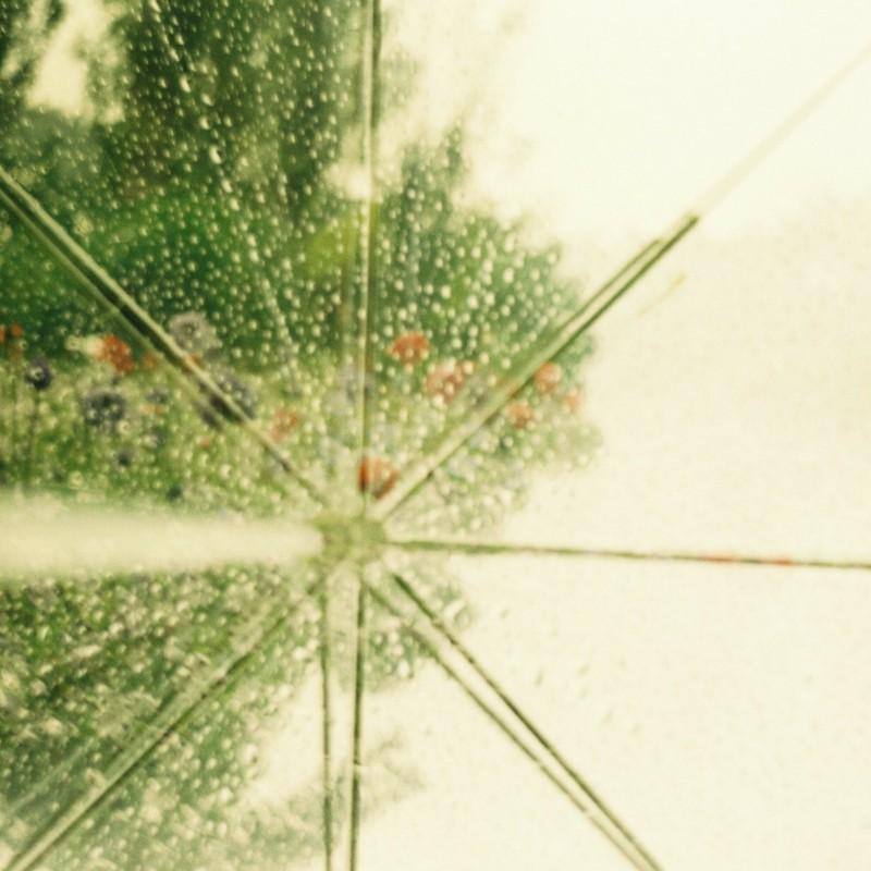 雨の日の物語