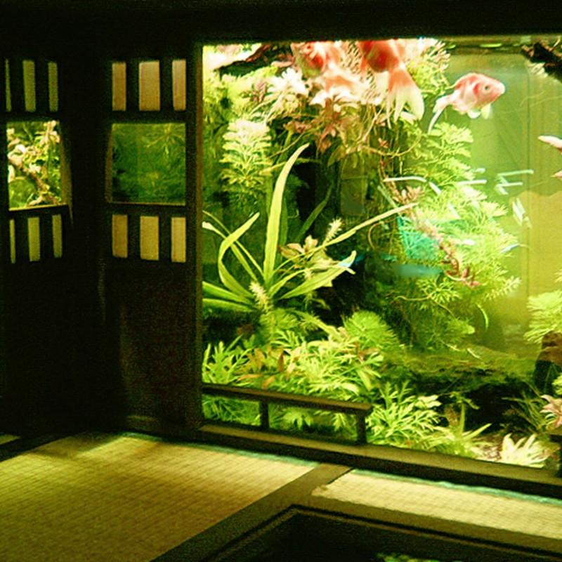 日本式水没庭園