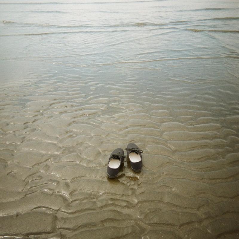 海へ帰る日