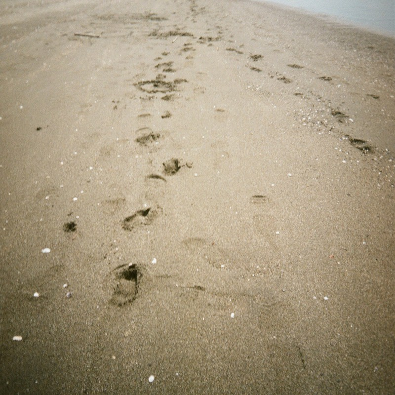 わたしの足跡 誰かの足跡