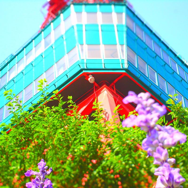 夏のテレビ塔の足元