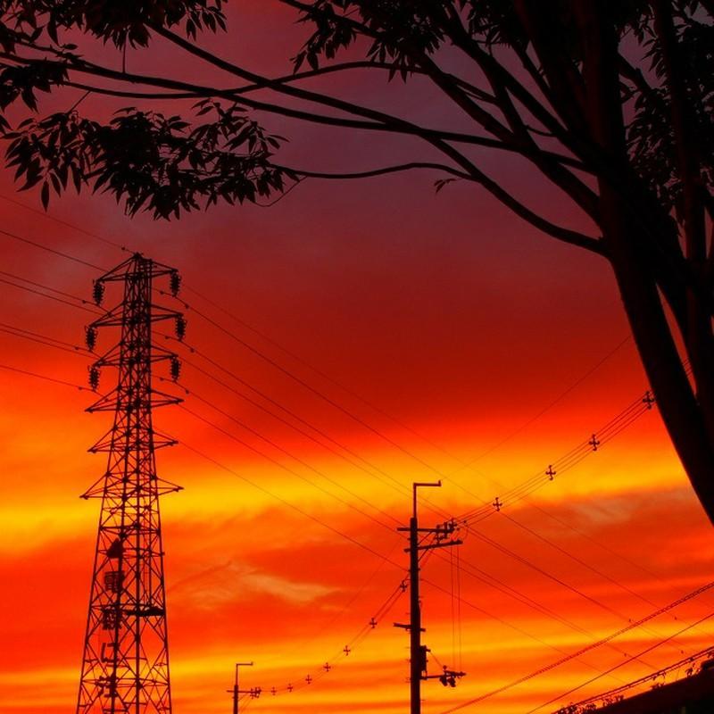 暁の空と鉄塔と電柱