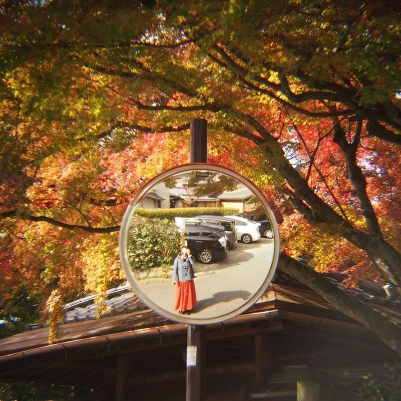 秋色に囲まれながら