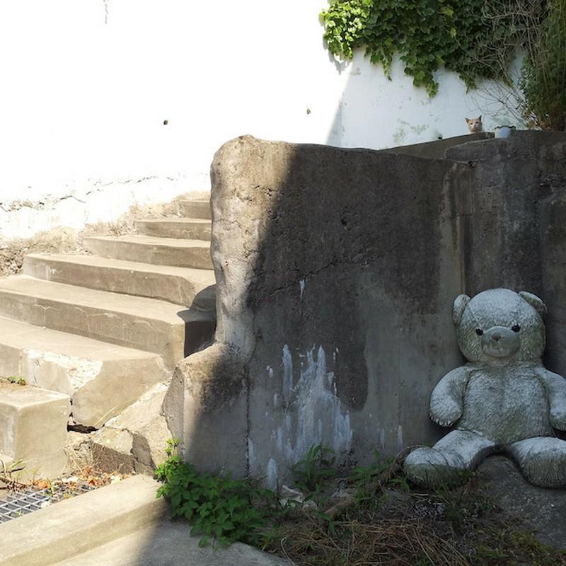 2017/06/18_ホームレス(?)なクマと猫