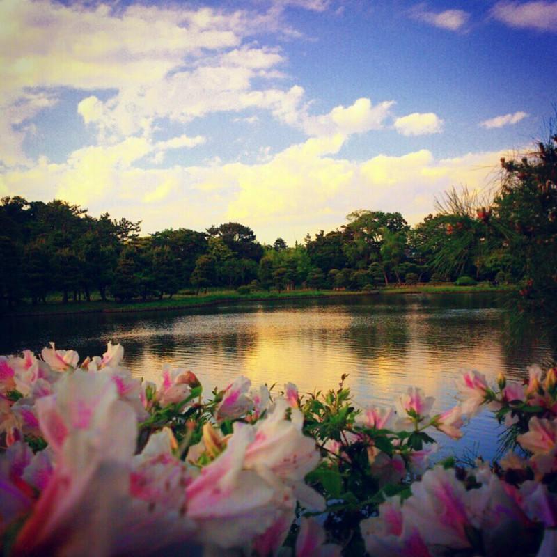 花薫る三渓園