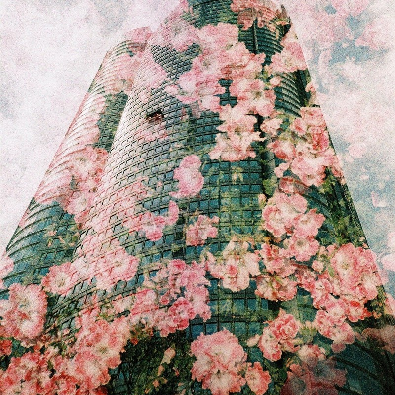 花×ヒルズ