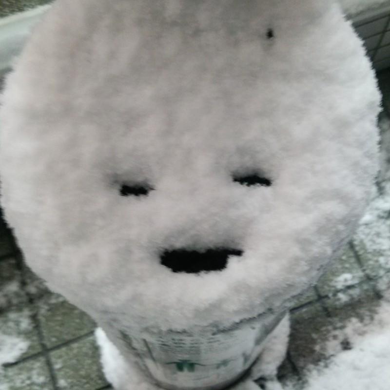 新春の京都は豪雪