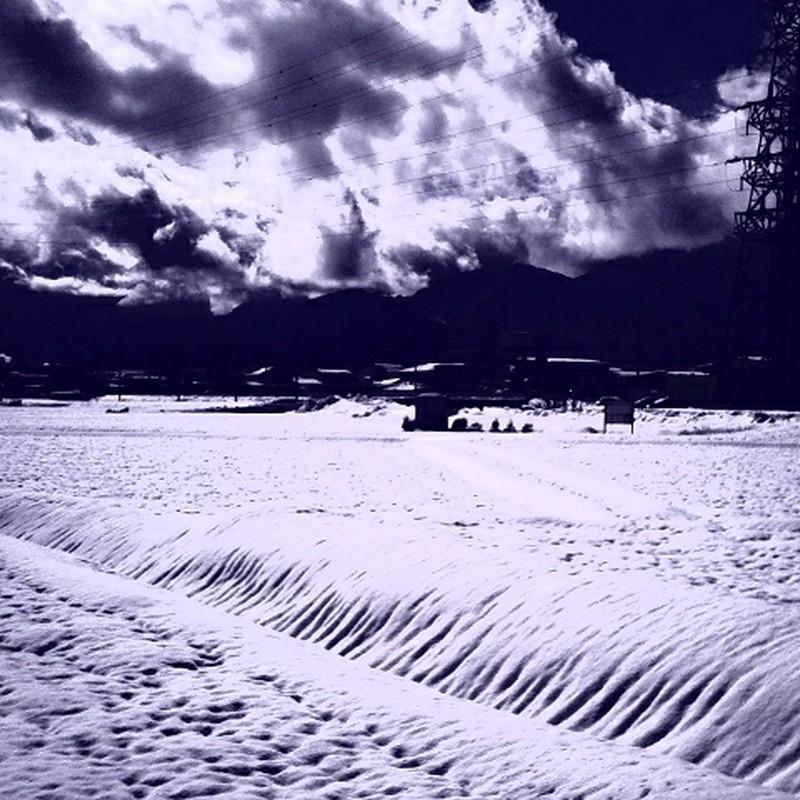 冬の田園❆