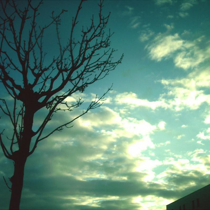 晴れの一日。