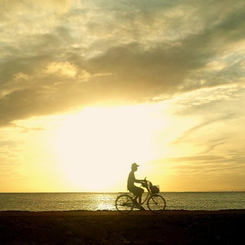 夕陽サイクリング