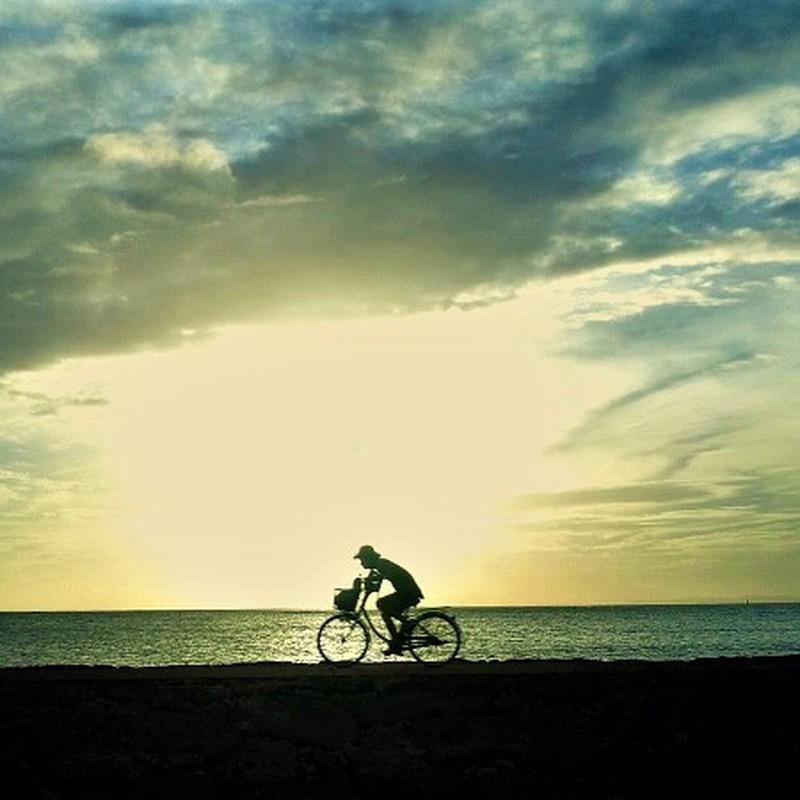 夕陽と自転車