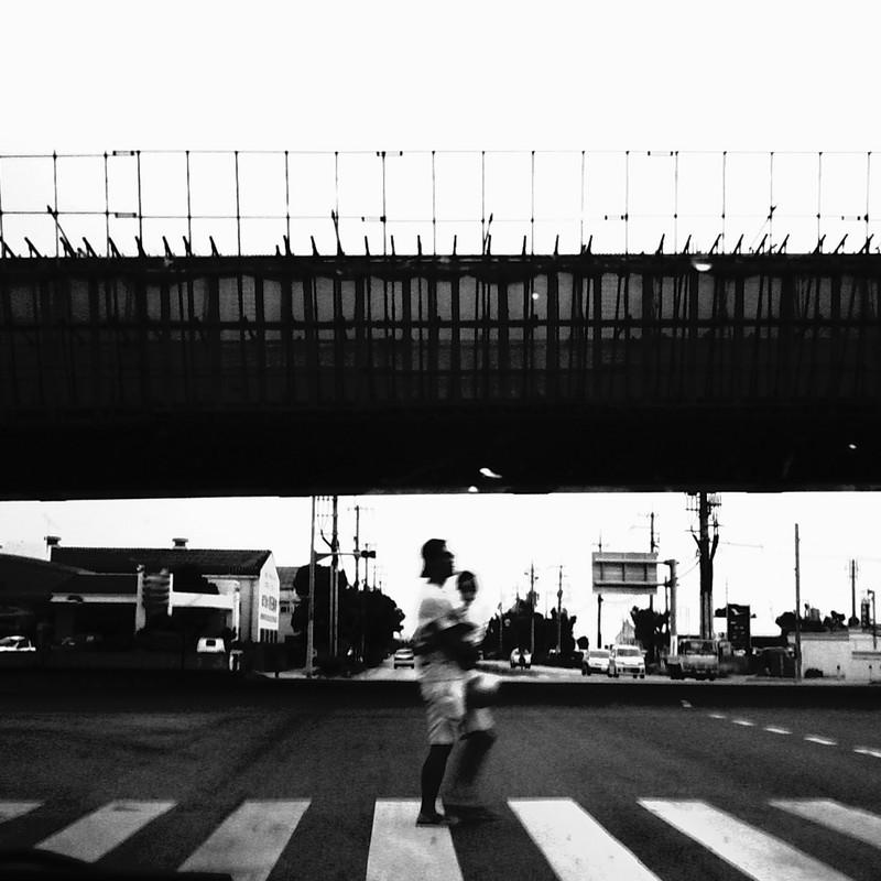 親子横断歩道