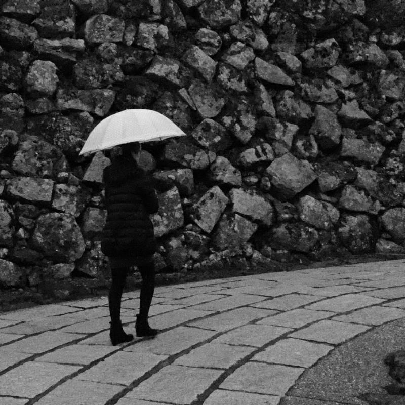 雨の城跡をぶらり
