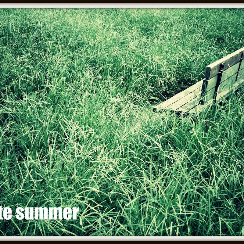 夏の終わりに...