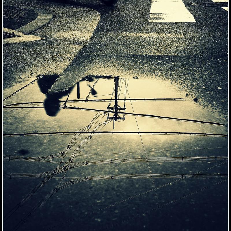 雨上がり...