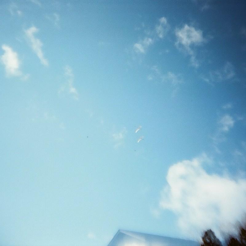 見上げた空に