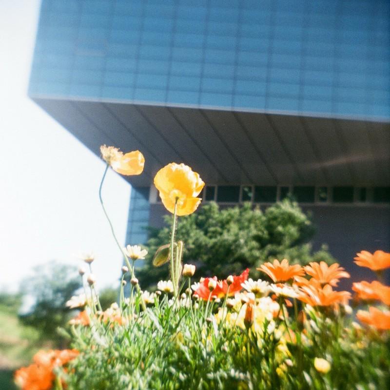 花と美術館