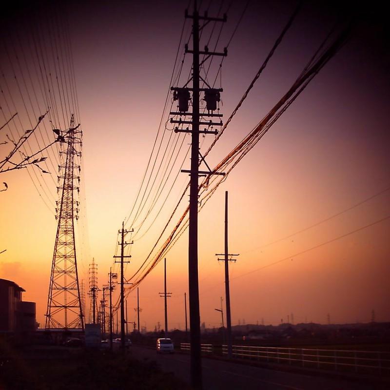 電線の行方