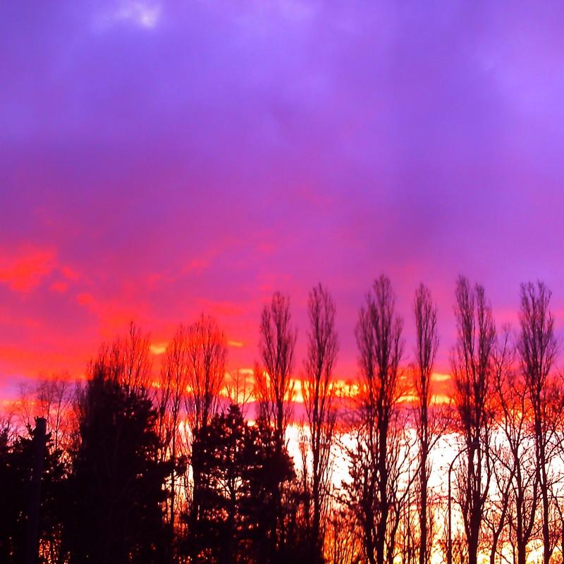 赤紫の夕暮れ