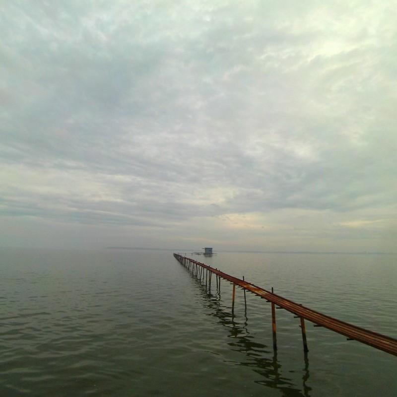 岸辺の風景