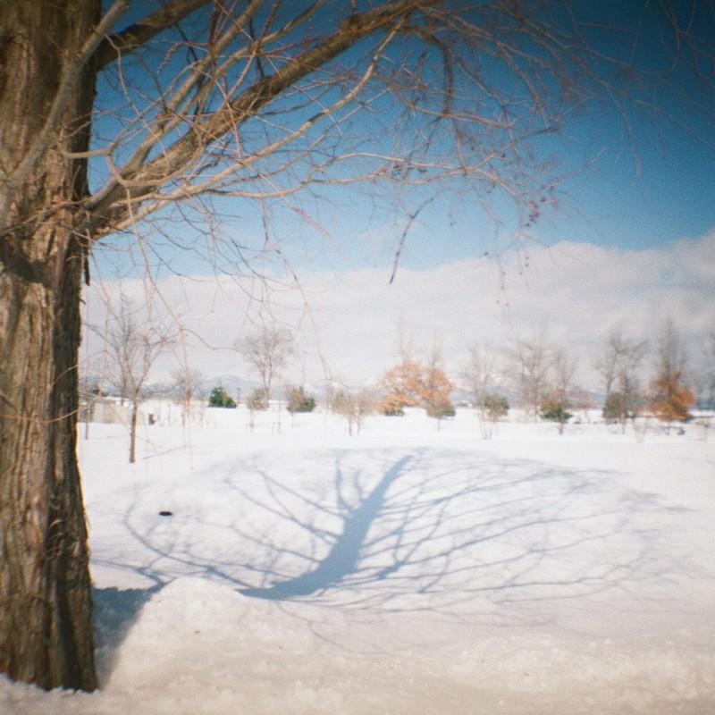 雪のスクリーン