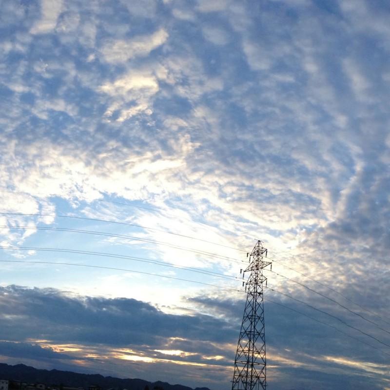 今日のうろこ雲