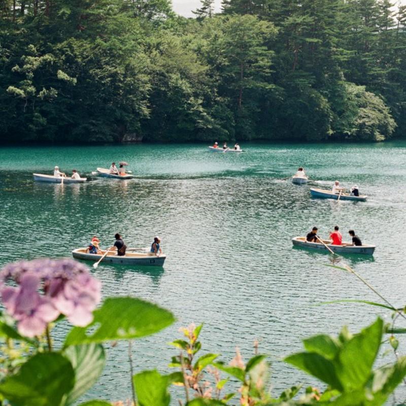 紫陽花とボート