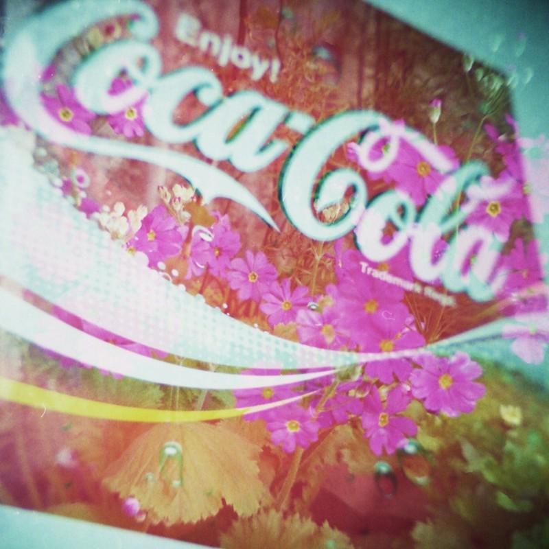 コカコーラ×花  コラボ♪